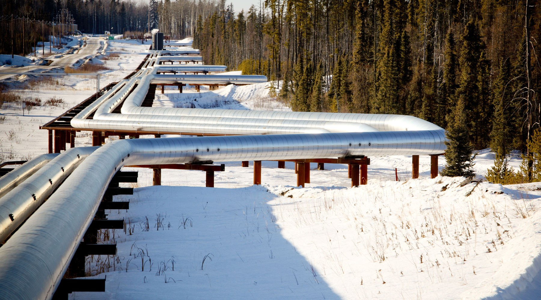 Image of silver pipeline running through a snowy forest