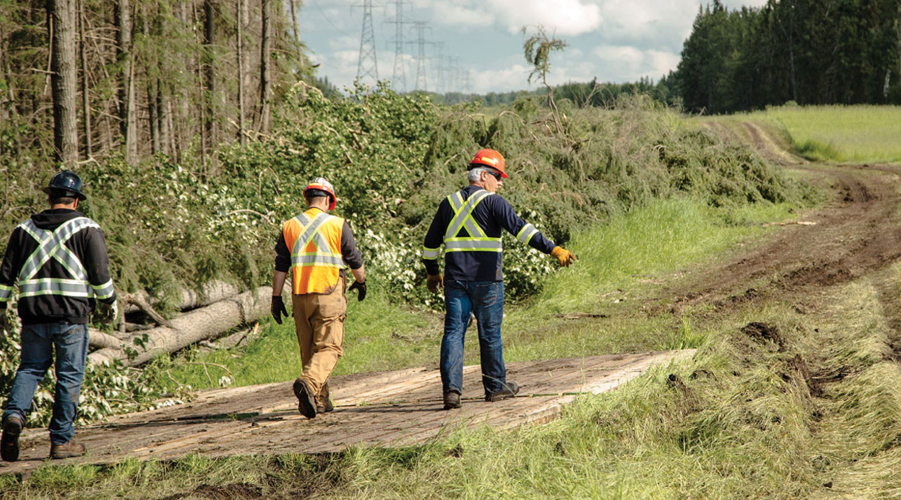 Three workers wearing PPE walking through a cleared section of landscape